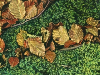 Autumn Shade Japanese sumi ink & acrylic on canvas 600 x 1500 mm (23½ x 59 in) 2015