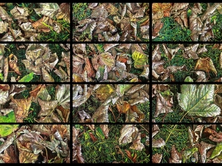 Autumn of Silence (polyptych) Japanese sumi ink & acrylic on canvas 305 x 610 mm (12 x 24 in) per canvas 2013