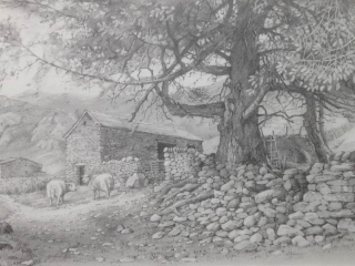 Yew and Ewes Medium: pencil