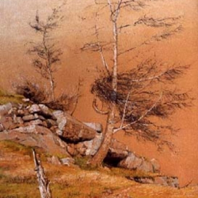 Larch Below The Rock Face